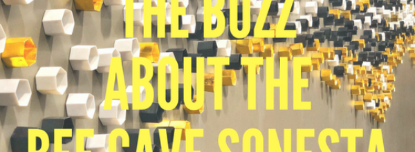 The Buzz On The Bee Cave Sonesta Hotel